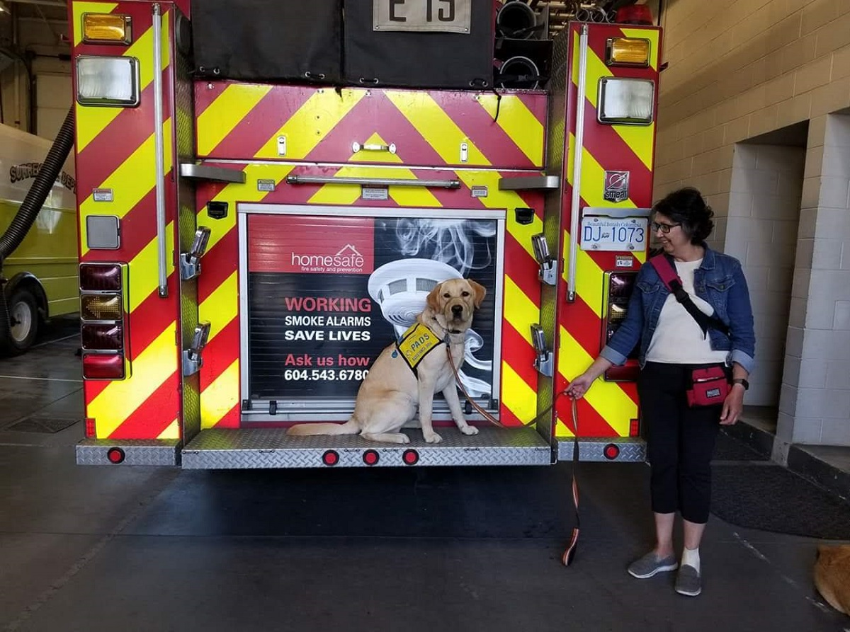 A woman holds a dog on a leach in front of a firetruck.