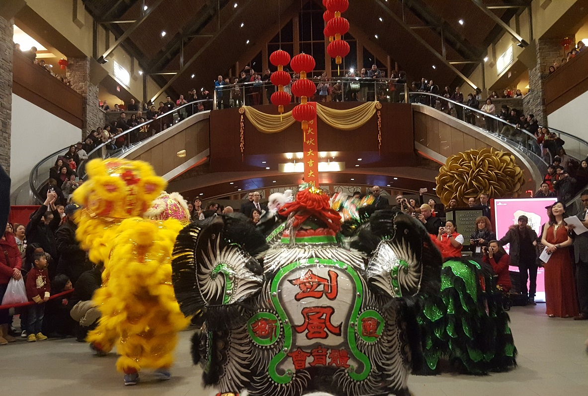 Students perform traditional Chinese lion dances at a Chinese New Year celebration.